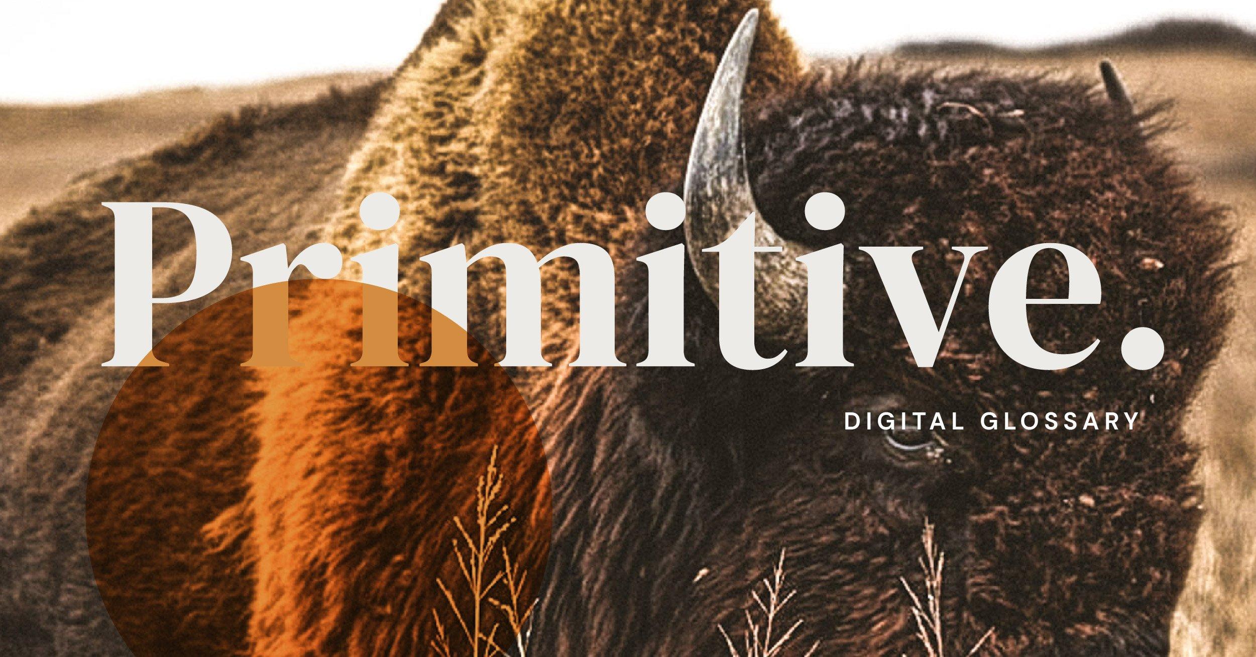 primitive's digital glossary