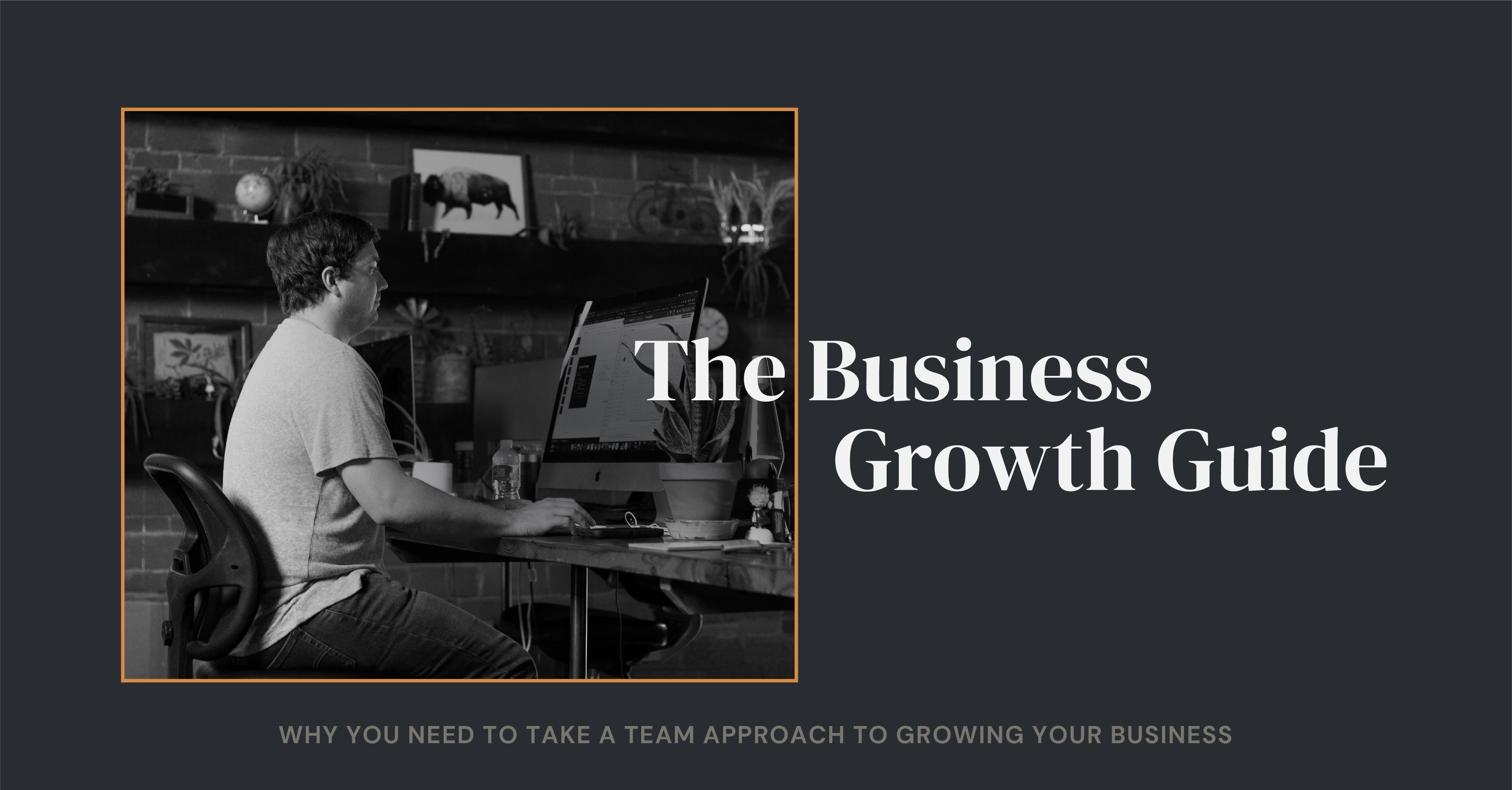 The Business Growth Guide